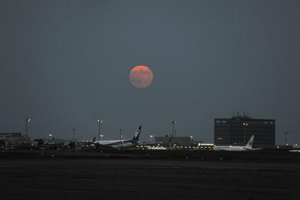 本日9日のスーパームーン、確かに大きいです。羽田空港にて18時6分撮影(吉) pic.twitter.com/b8ueVhZaMj