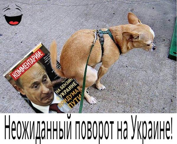 """Порошенко и Путин снова поговорили о прекращении """"внутриукраинского конфликта"""" на Донбассе - Цензор.НЕТ 6598"""