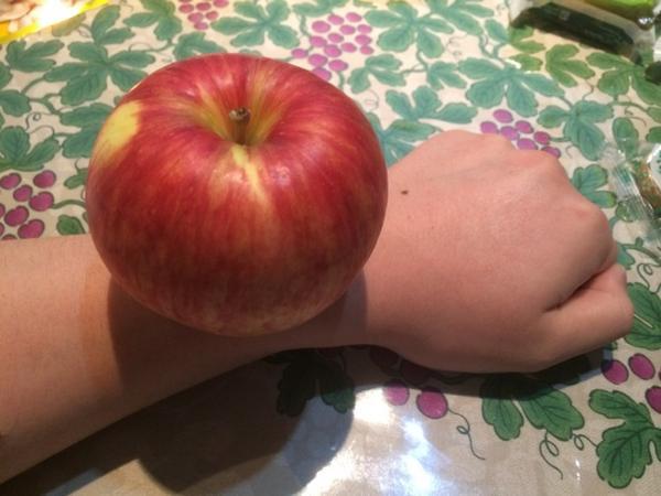 Apple Watchです。ご確認ください。 http://t.co/h1U5KW2POF