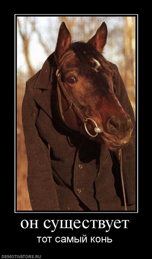 решили прикол картинки конь в пальто враждовал только