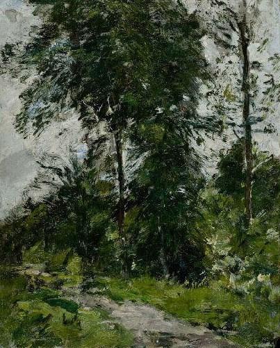 Arbre vert – l'allée