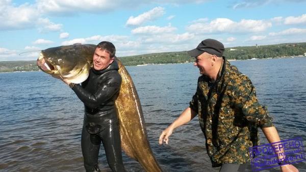рыбалка в самаре видео на самарке