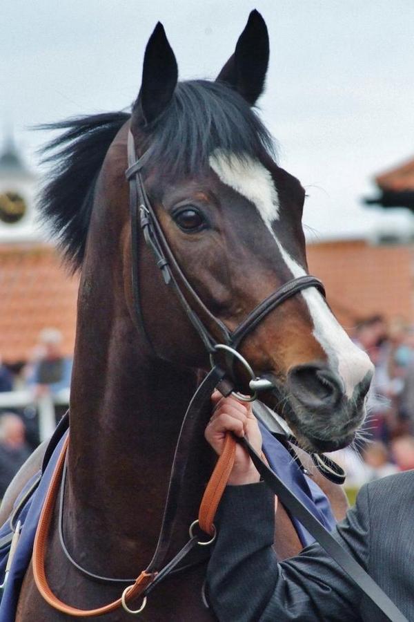 Goodby beautiful boy. RIP Wigmore Hall x http://t.co/MgkodSa6Nx