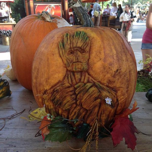 Groot carved pumpkin at big thunder ranch @jamesgunn http://t.co/gwhfCNNoE3 http://t.co/PyUGRQmpDP