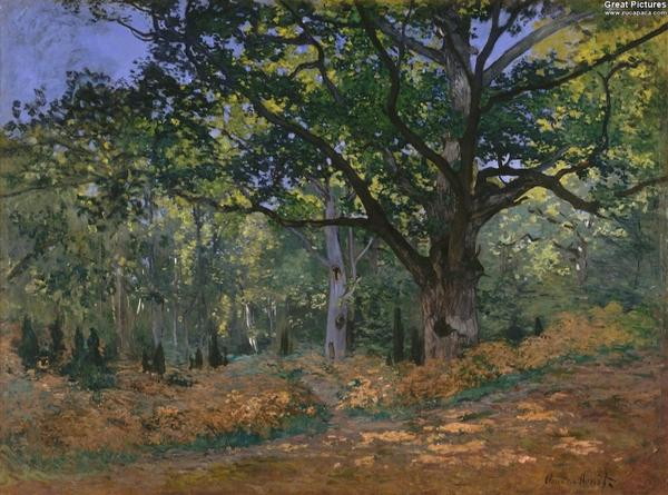 Claude Monet: The Bodmer Oak, Fontainebleau Forest, 1865. Oil on canvas, 96.2 x 129.2 cm. Metropolitan http://t.co/Ec0QQjBzTI