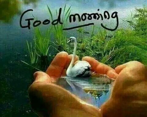 Ikram Qureshi On Twitter Assalam Alyekum Hi Friends Good Morning I Wish To All Of You Very Heppy Life Tco Em4KiOsbXS