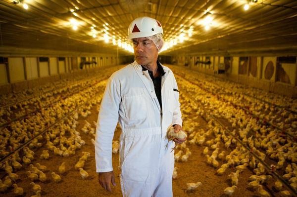 Pervasive use of farm antibiotics fuels concerns about impact on human health: http://t.co/YhVHA6suOF http://t.co/LZ2B1J2Hi1
