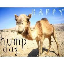 Happy #HumpDay! http://t.co/RoIi6wunRJ