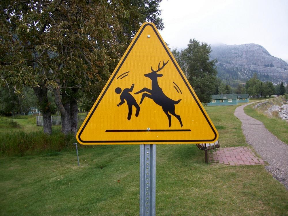 Картинки смешные дорожные знаки