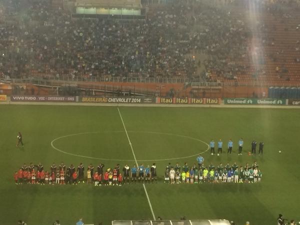 Marcelo Hazan  Marcelo HazanPalmeiras e Flamengo estão perfilados no  gramado d9ff89e881a2a