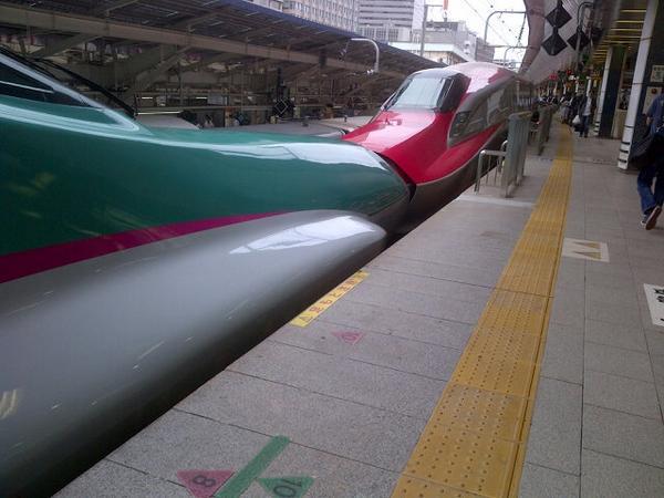 東北新幹線の見た目と走行音がかっこよくて好きでしたが、連結してるのを見て彼女いたんだ、みたいなショックが… http://t.co/zXX0IcLrwL