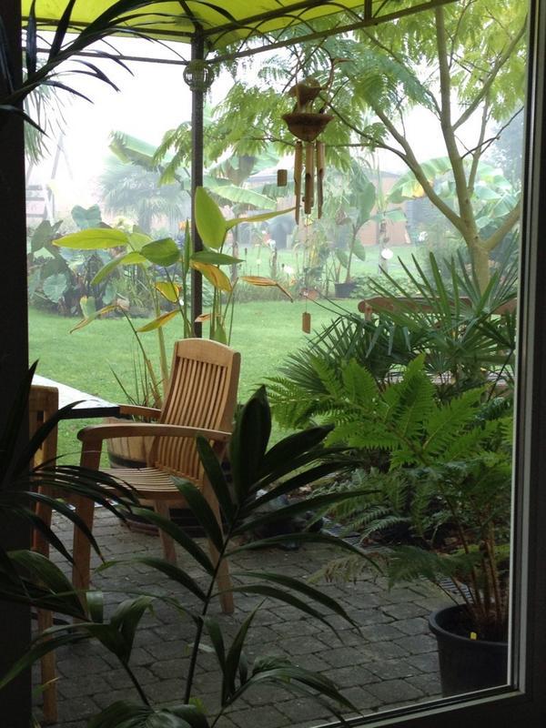 """Jardin """"La Palmeraie"""" à Renaix (B) By7PvVfCMAAsDBu"""
