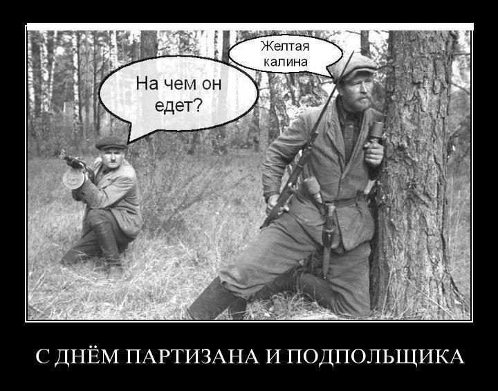 демотиваторы про партизаны белоруссии вов старые снимки, актриса