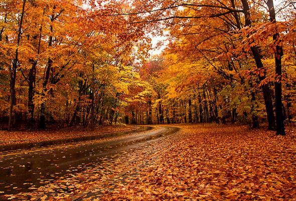 Blogto On Twitter Quot The Best Places To View Fall Colours