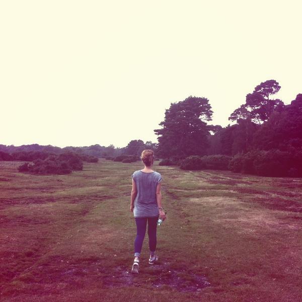 Whitefield Moor
