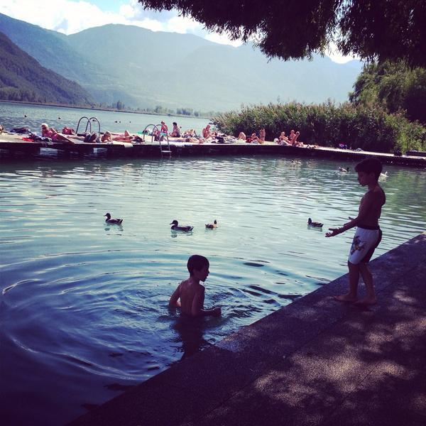 Boys having fun chasing the ducks by Lake Caldaro #inSouthTyrol although the ducks weren't so keen! @visitsouthtyrol http://t.co/DB7xPnZSI1