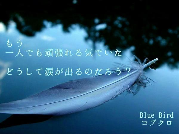 バード 歌詞 ブルー