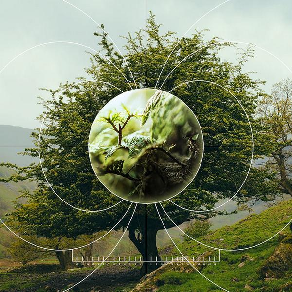 How information theory could hold the key to quantifying nature. http://t.co/bidWQ7dsiv by @vero_greenwood http://t.co/ek5DUb2Ul9
