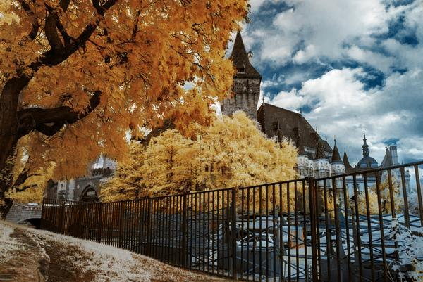 Its nice to start the week off with some nice fall imagery. See more Budapest shots http://t.co/IITTlwnl3W #fall http://t.co/MC0vVOigYW