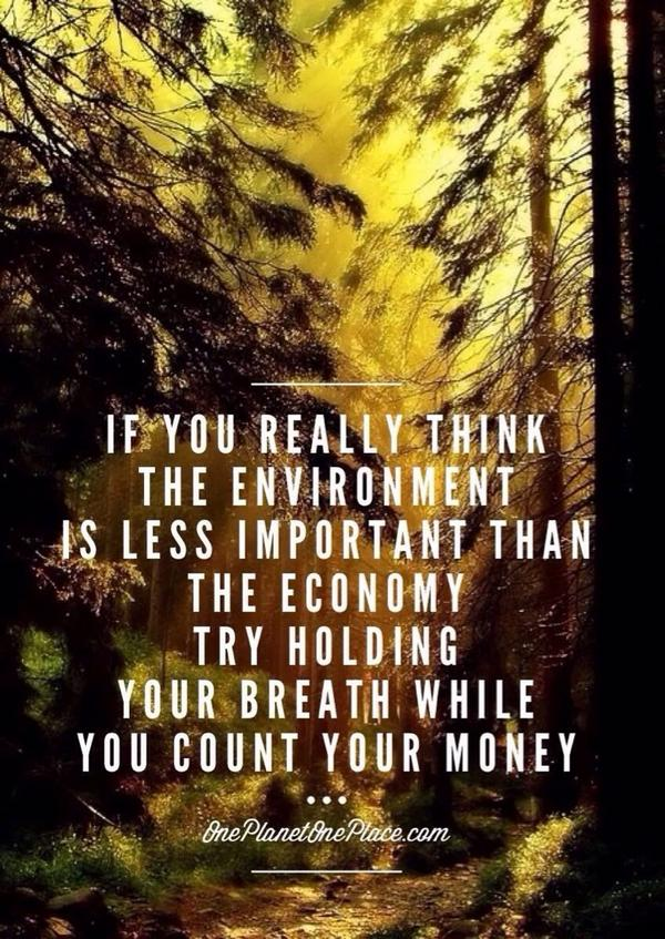 If you really think the environment is less important... #climatemarch #ClimateChange #Climate2014 #Climatechange2014 http://t.co/RHlvUxjbUw
