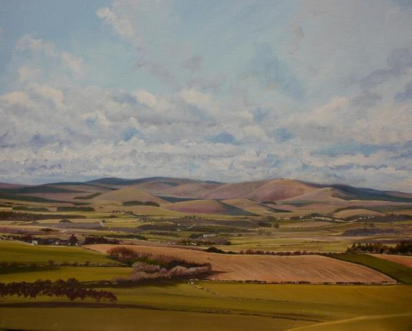 #northeasthour Cheviot from Corby Crags between Rothbury and Alnwick- another commissioned painting. http://t.co/bohyWz6OxF