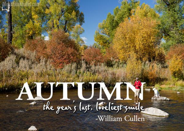 Happy first day of #fall! http://t.co/VevKiA5LEM
