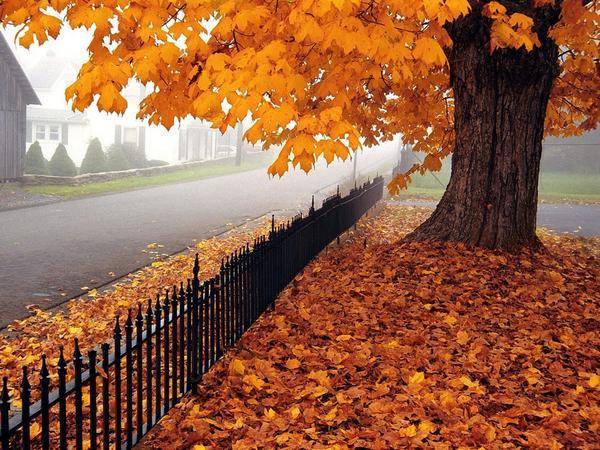 Equinozio d'autunno 2016, il primo giorno dopo l'estate