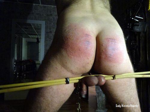 bondage fetish cbt sklave