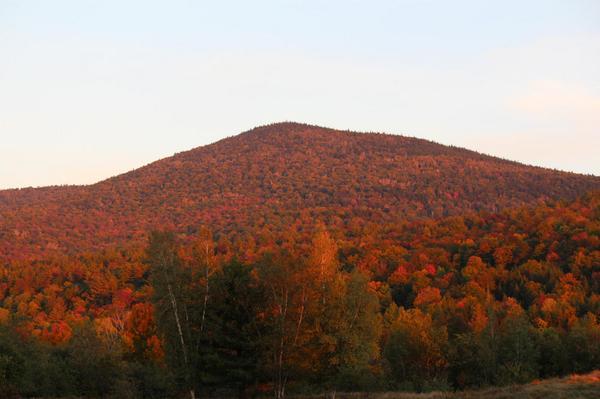 Spruce Mountain, Plainfield. #foliage #vt #autumn http://t.co/qPqzEMLG8C
