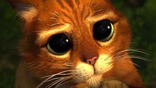 Ecco una foto di #Fedez quando ascolta una canzone che gli piace a #XF8. http://t.co/BIeXQQ2vrg