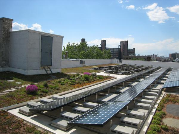 Green roofs provide insulation and can be a cost effective way to help reduce energy bills http://t.co/yQ926hGdyJ http://t.co/vwkE5ciV7s