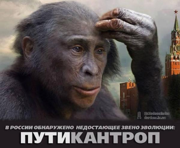 Путин посетит оккупированный Крым 18 августа - Цензор.НЕТ 2690