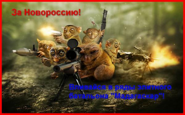 Российско-террористические войска резко активизировали обстрелы позиций украинских воинов, - ИС - Цензор.НЕТ 487