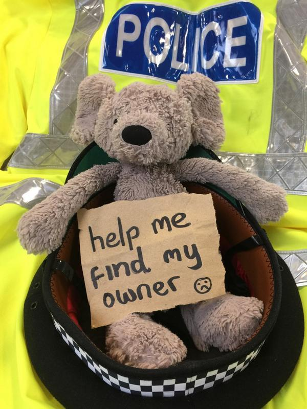 Please help me find my owner. I was lost at the #behindthebadge open weekend