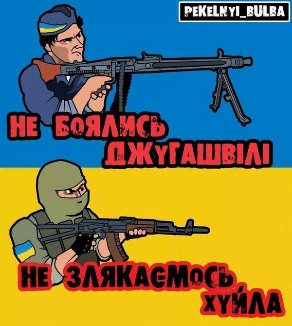 Латвия поможет Украине в Евросуде по искам против России, - Петренко - Цензор.НЕТ 3532