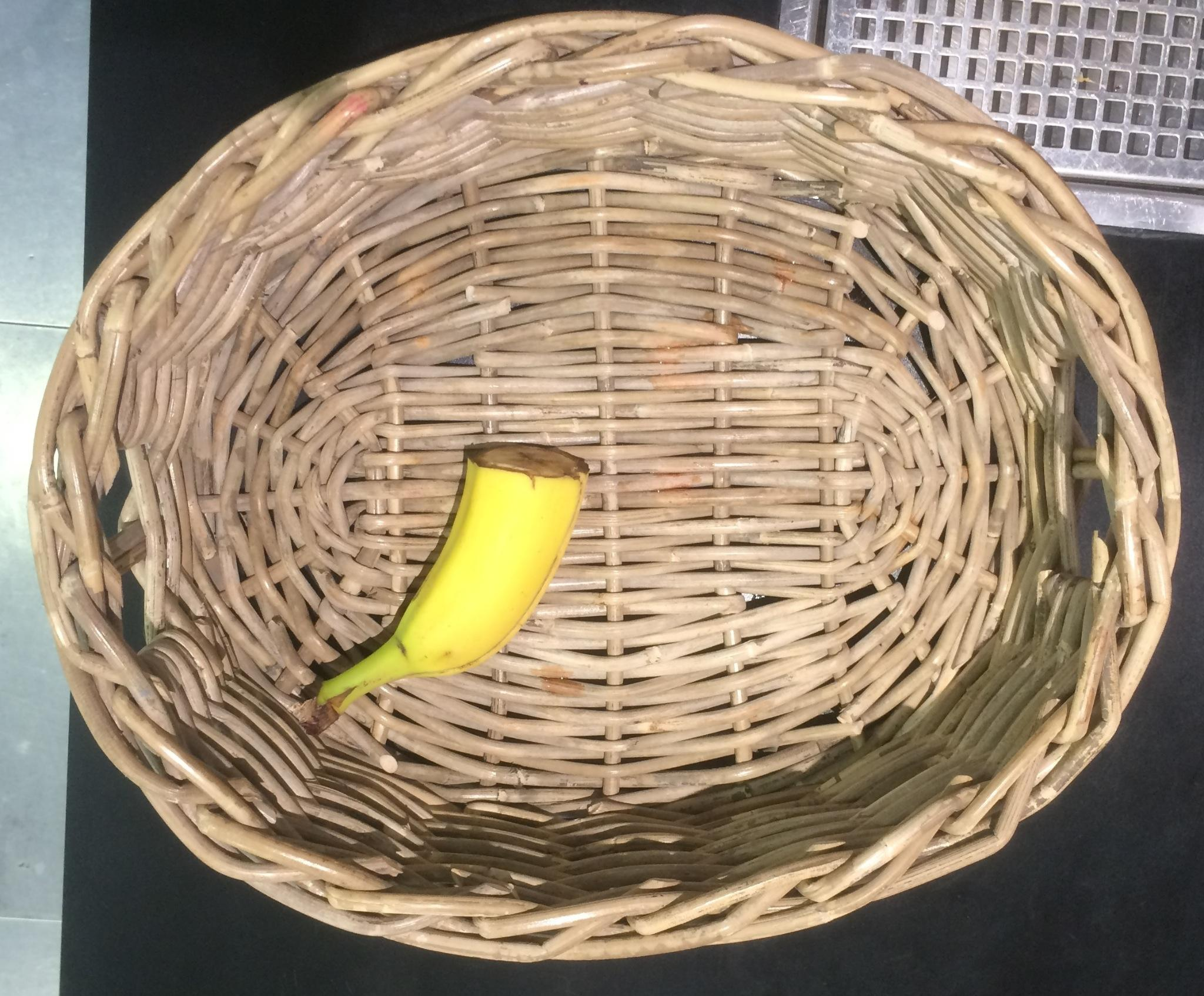 Err, not sure who is decapitating bananas in the fruit bowl every day - may be frugal but not tempting! #bananarific http://t.co/fvaMU21XNk