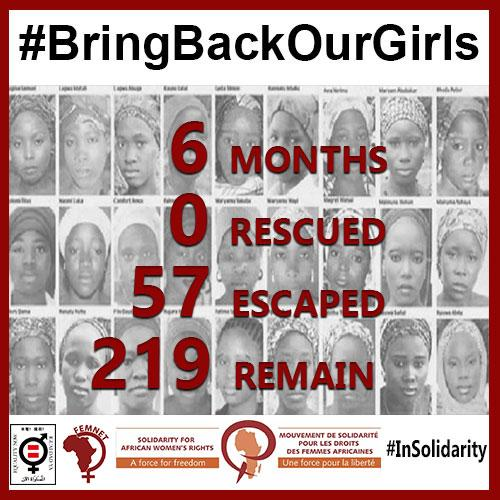 6 months, 0 rescued, 57 escaped, 219 remain. http://t.co/e6MiaY4tbD #BringBackOurGirls #IDG2014 http://t.co/qFaP9rQPBW