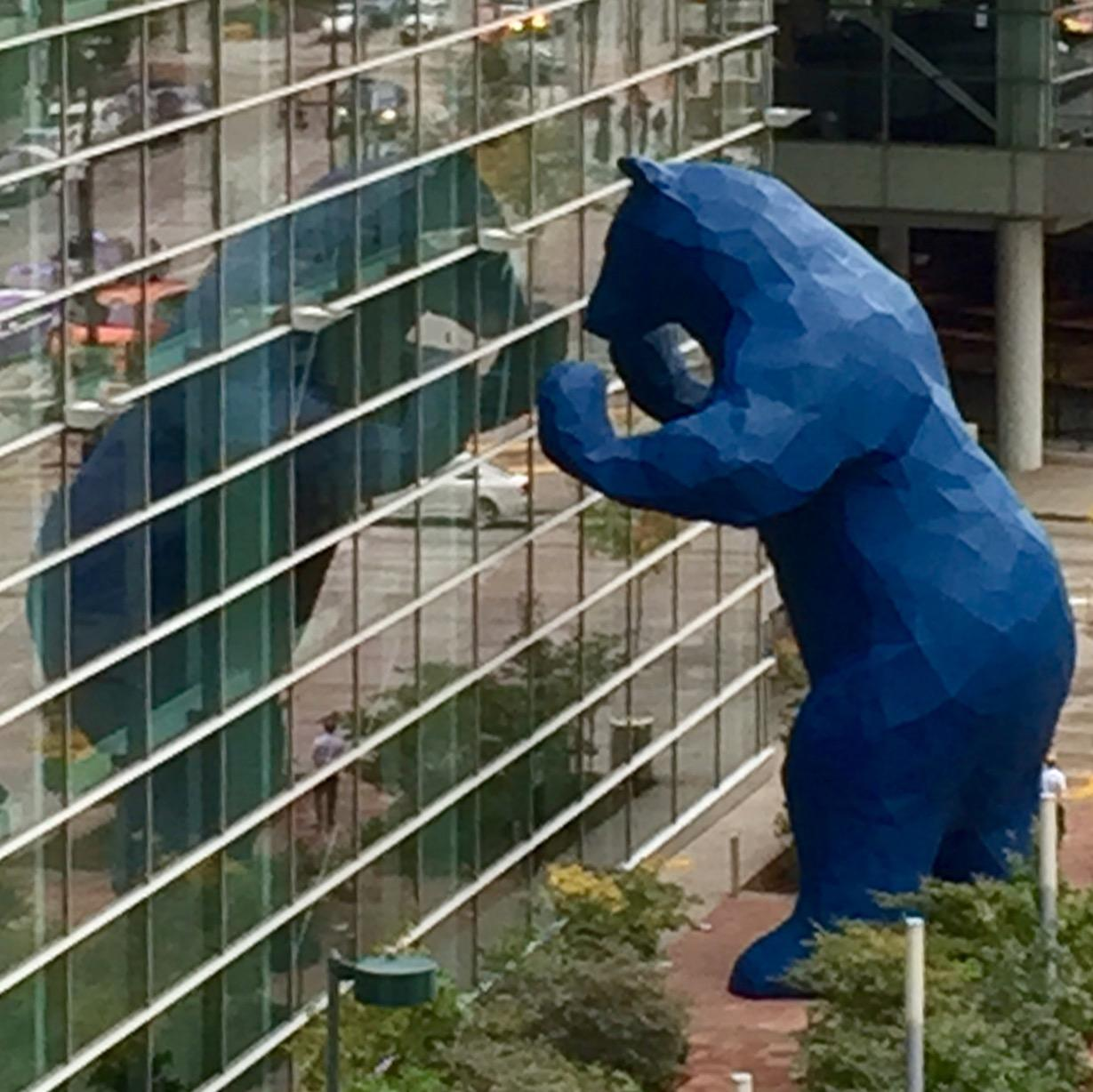 RT @ElliottGSpencer: Giant blue bear on the loose in Colorado. http://t.co/JHCHJtU5B2