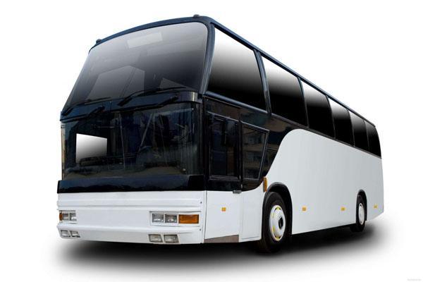 договор на оказание транспортных услуг автобусами образец