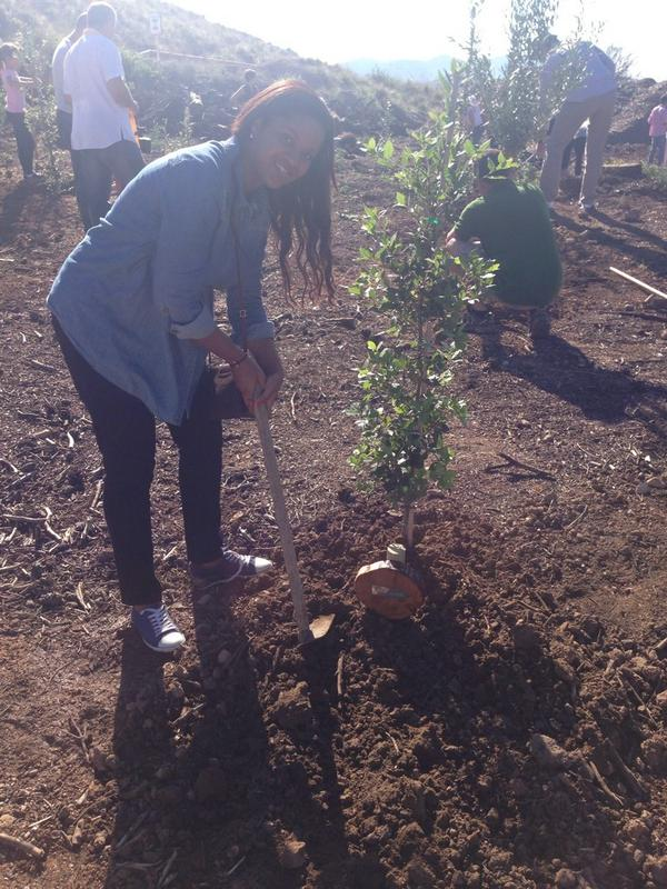 Muy bonita experiencia plantando árboles en la zona afectada por incendio el año pasado en andratx #MallorcaFeelings http://t.co/AZchSCfMzN