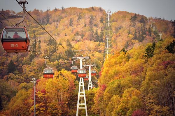 札幌国際スキー場が紅葉ってた http://t.co/5qd6dZ6ZKK