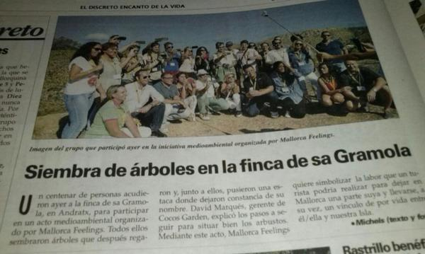 A por la prensa!!! @ElenaJuliaF: Salimos en @UHmallorca #MallorcaFeelings con los árboles @AAndratx @eventsfeelings http://t.co/u65Mm97mfb