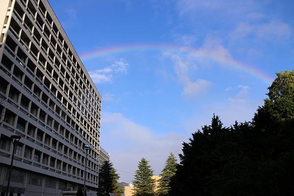台風が通り過ぎ、星陵キャンパスに見事な虹がかかりました。 http://t.co/9qF8MqvmIL