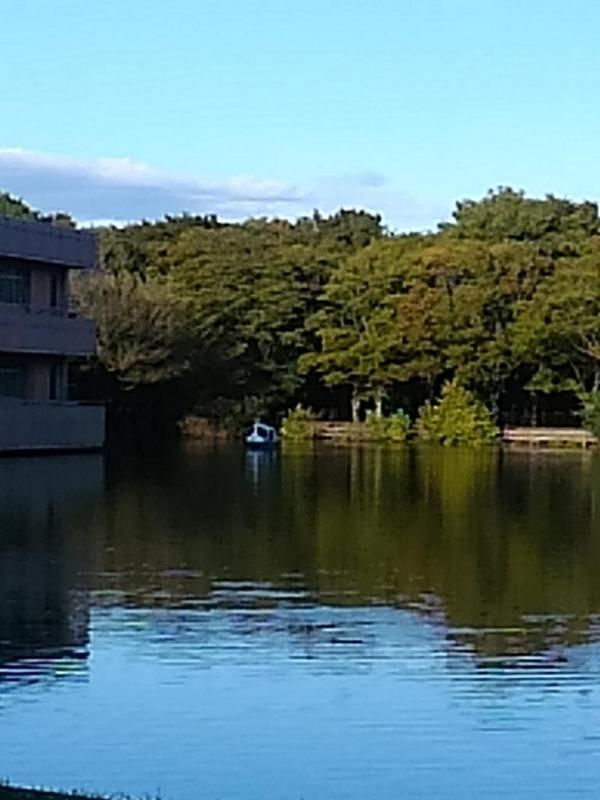 博士号、人が乗って漕がれているの初めて見た http://t.co/QnStvL85Ee