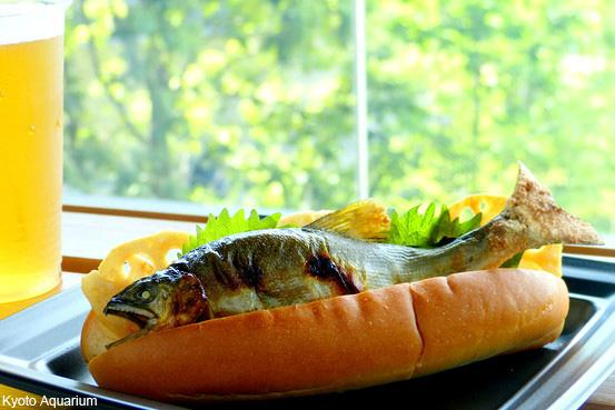 「アユ1匹丸ごとドッグ」はいかが? 京都水族館のビックリメニュー http://t.co/PScAMMjHNe アユの塩焼きドッグは31日までの期間限定販売で、価格は500円 http://t.co/WDJKVDXUiM