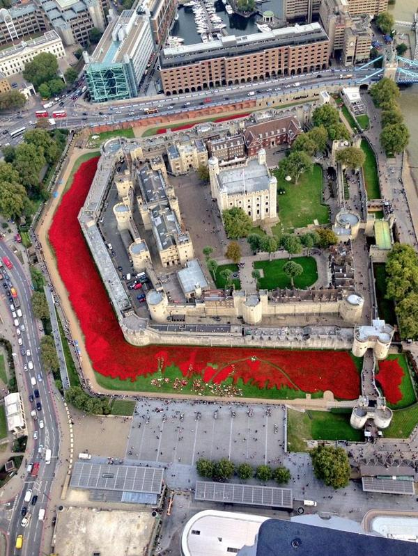 With only a month of #Towerpoppies planting left, this photo from @MPSinthesky really shows the scale of the project. http://t.co/fLnsWm7IPt