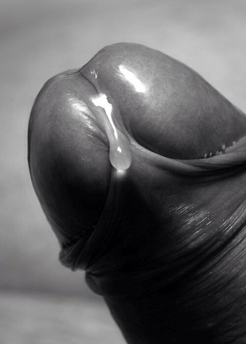 Adonis erotic male masterpiece photography