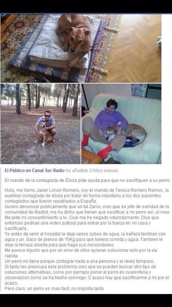 Hay que ayudar a Javier el marido de Teresa Romero contagiada de ebola.Quieren sacrificar a su perro. #EbolaEnEspana http://t.co/T1qH2XOOVV