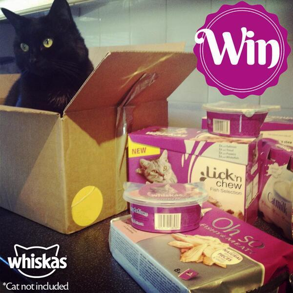 Want to win some pawesome prizes for your little lion? Follow & RT to enter! http://t.co/SFmSAIfjfb http://t.co/7ZLdbDPoO7