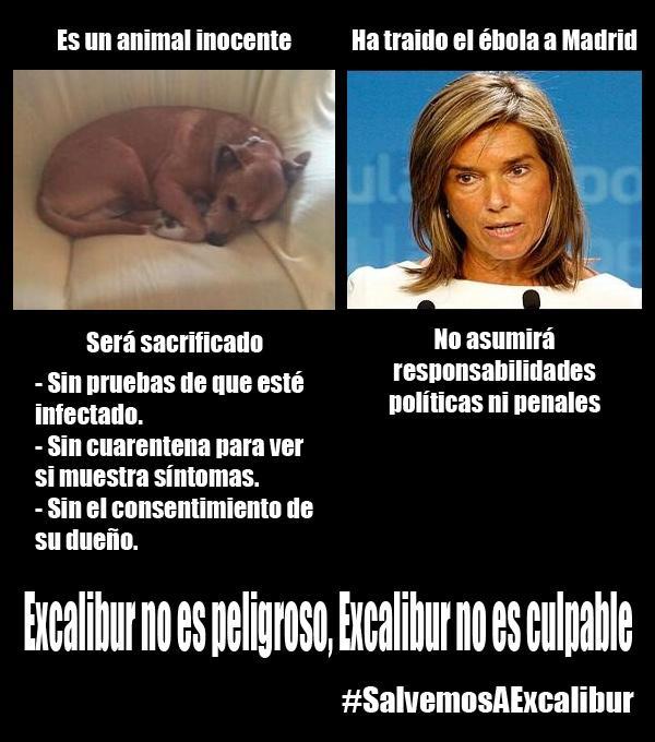 """@JL69: El Perro no es peligroso, la peligrosa es ella... #SalvemosaExcalibur #AnaMatoDimision #Ebola http://t.co/xuWEDlQQd3"""